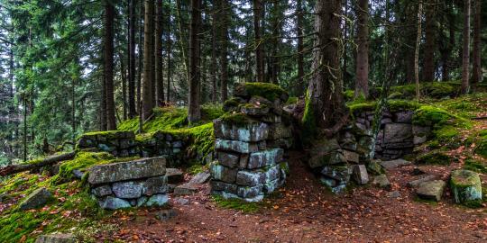 Imposante Zeitzeugen: Die alten Granitfelsen im Fichtelgebirge (3)