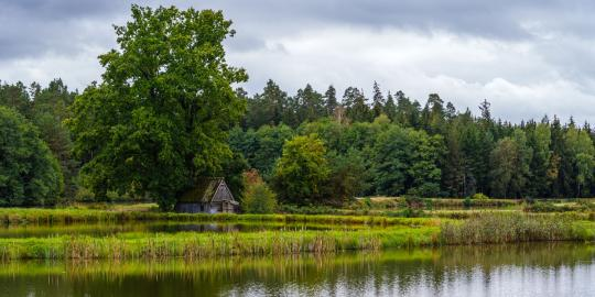 Natur pur: Die Tirschenreuther Teichpfanne (3)